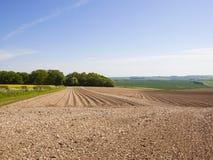 Muster und Beschaffenheiten der Kartoffel rudert im kreideartigen Boden der Yorkshire-Wolds im Frühjahr Stockbild