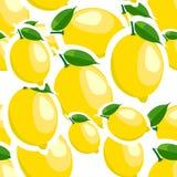 Muster verschiedene Größen der Zitrone und der Blätter auf weißem Hintergrund Lizenzfreies Stockfoto