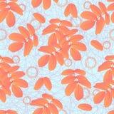 Muster von Blättern Lizenzfreie Stockfotografie