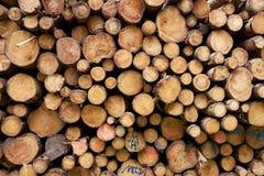 Muster von den cutted und gehefteten Baumstämmen angesehen von der Front lizenzfreies stockbild