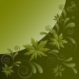 Muster von den dekorativen Blättern und von den Locken Stockfotos