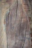 Muster von der Planke Lizenzfreies Stockfoto