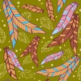 Muster von Federn Stockbilder