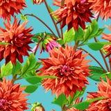 Muster von Georgina-Blumen mit Blättern Lizenzfreie Stockfotografie