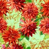 Muster von Georgina-Blumen mit Blättern 2 Lizenzfreies Stockbild