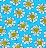 Muster von großen weißen Blumen Lizenzfreie Stockfotos