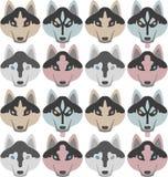 Muster von Hunden mit den Knochen und den Tatzen Nahtloses Haski, Labrador, Chihuahua, Pug, Dalmatiner lizenzfreie abbildung