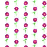 Muster von purpurroten, schönen, bunten, einfachen Blumen Stockfoto