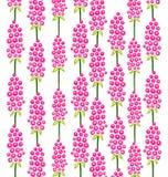 Muster von rosa Blumen Stockfotografie