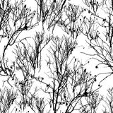 Muster von Schattenbildern von Büschen von einem wilden stieg auf Schnee Stockbild