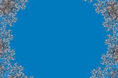 Muster von weißen Blumen der Mandel Kaleidoskop, Mandala Feld Lizenzfreie Stockbilder
