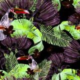 MUSTERhintergrund des nahtlosen, tropischen Dschungels des schönen Aquarells Blumenmit Palmblättern, Blume von Rosen, Kapriolen u Lizenzfreie Stockfotos