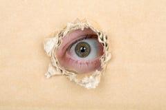 Mustern Sie das Schauen von einem Loch in einer Pappe lizenzfreie stockfotos