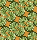 Musterscheibe Kalk-Zitrusfrucht Hintergrund Artskizze Lizenzfreie Stockfotos