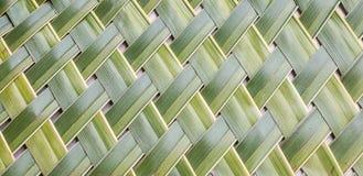 Musterspinnen von Kokosnussblättern Stockfoto