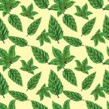 Mustervektor-Entwurfshintergrund der schönen Blätter nahtloser stock abbildung