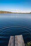 湖Mustjarv 库存照片