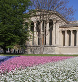Musuem of Fines Arts in Budapest. The Museum of Fine Arts in Budapest on a Spring morning with colorful flowers in the foreground Royalty Free Stock Image