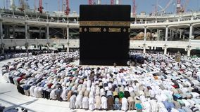 Musulmanes del jadye de Makkah Kaaba almacen de video