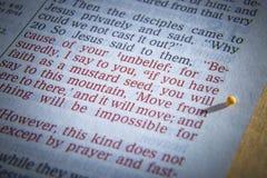 Musztardy ziarno i otwarta biblia Zdjęcie Stock