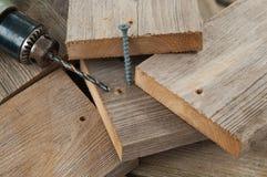 musztruje śrubowego drewno zdjęcie royalty free
