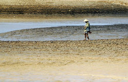 MUTAMENTO CLIMATICO DELL'INDONESIA Fotografie Stock