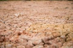 Mutamento climatico, riscaldamento globale, suolo incrinato del primo piano Immagini Stock Libere da Diritti