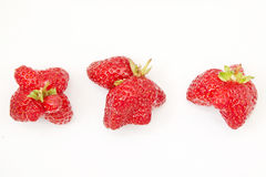 Mutant strawberry on white background Stock Photography