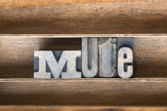 Mute wooden tray Royalty Free Stock Photo