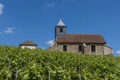 Mutigny Church Vineyards. The church of Mutigny in Champagen-Ardenne with Champagne vineyards in the summer, France Stock Images