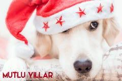 Mutlu Yıllar Dijital Kart Στοκ Εικόνες