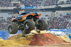 Mutt Rottweiler Monster Truck Royalty Free Stock Images