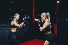 Muttahida Majlis-e-Amal de Boxing d'athlète de fille photo stock
