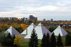 Muttart conservatory in edmonton. Muttart conservatory in autumn, edmonton city, alberta, canada stock images