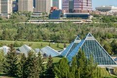 Muttart drivhus, Edmonton Royaltyfri Fotografi