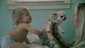 Mutter, Baby und Hund stock footage
