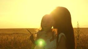 Mutter geht mit Baby auf dem Gebiet Tochter hält in ihrer Hand ein Ohr des Weizens Mutter und kleiner Tochterweg auf einem Feld v stock video footage