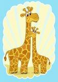 Mutter-Giraffe und Schätzchengiraffe. Stockfoto
