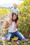 Mutter mit dem Sohn, der Spaß im Traubenweinberg hat Stockbilder