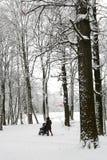 Mutter mit Kind im sidercar Weg im Winterpark Lizenzfreie Stockfotografie