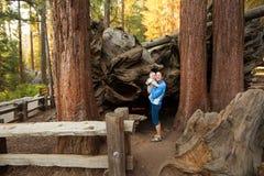 Mutter mit SäuglingsNationalpark besuch Mammutbaums in Kalifornien, US lizenzfreie stockbilder