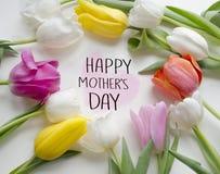 Mutter ` s Tagesgrußkonzept Schöne blühende Tulpenblume Blumenauslegung? Hintergrund, Hintergrund, Auslegung der Abbildung Feld d Stockfotografie