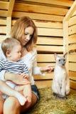 Mutter, Schätzchen und Katze Lizenzfreies Stockbild