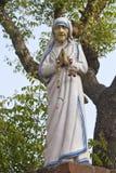 Mutter Theresa stockbilder