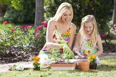 Mutter u. Tochter, die Blumen pflanzend im Garten arbeitet Stockbild