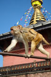 Mutter und Baby albern gegen nepalesisches swayambhunath stupa herum Lizenzfreie Stockfotografie