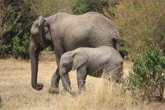 Mutter und Baby in Bewegung Stockfoto