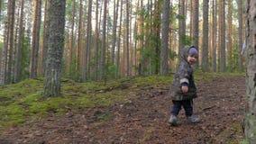 Mutter und Baby, die in Kiefernwald, Spaß, aktive Familie habend geht stock video footage