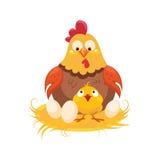 Mutter-und Baby-Huhn im Nest mit Paaren von Eiern, von Bauernhof und von Landwirtschaft der dazugehörigen Abbildung in der hellen Stockbild