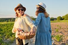 Mutter und jugendlich Tochter mit einem Korb von frischen Eiern im Garten, goldene Stunde stockbild